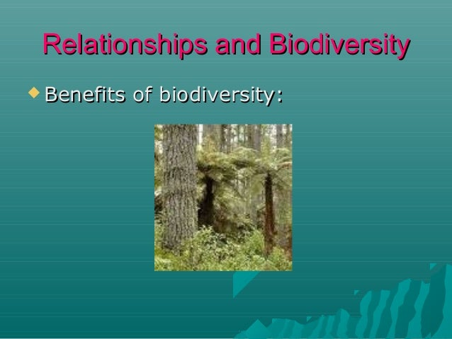 Relationships and Biodiversity  Benefits  More  of biodiversity:  food sources for consumers  Less chance of extinction...