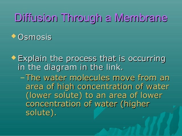 Diffusion Through a Membrane  Which  way will diffusion (osmosis) occur? (Percents indicate concentration of water.)  97%...