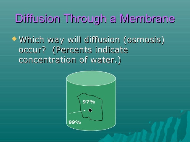 Diffusion Through a Membrane  Which  way will diffusion of water (osmosis) occur? (Percents indicate concentration of sol...