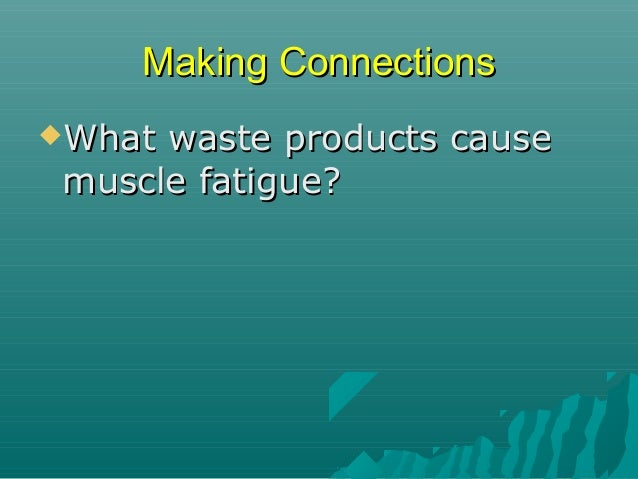 Making Connections What  waste products cause muscle fatigue? Mitochondria ATP  O2 + glucose  CO2 + H2O Capillary