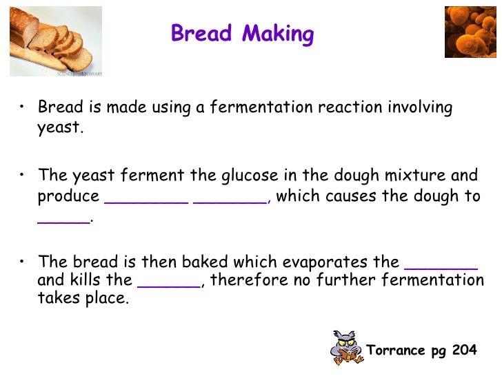 fermantation lab breadmaking