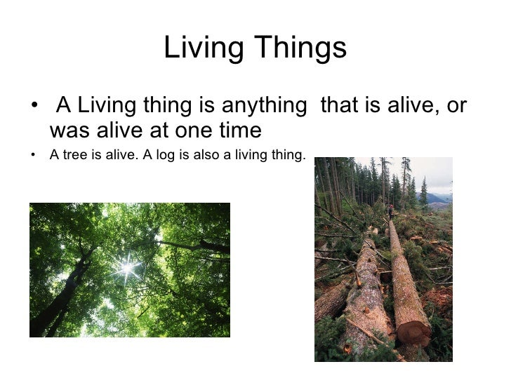 Living Things <ul><li>A Living thing is anything  that is alive, or was alive at one time  </li></ul><ul><li>A tree is ali...