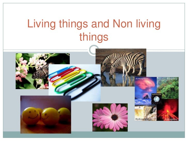 Living things and Non living           things