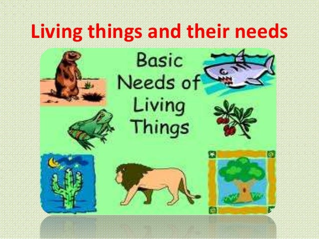 Free Worksheets worksheet of living and nonliving things : Living things and their needs