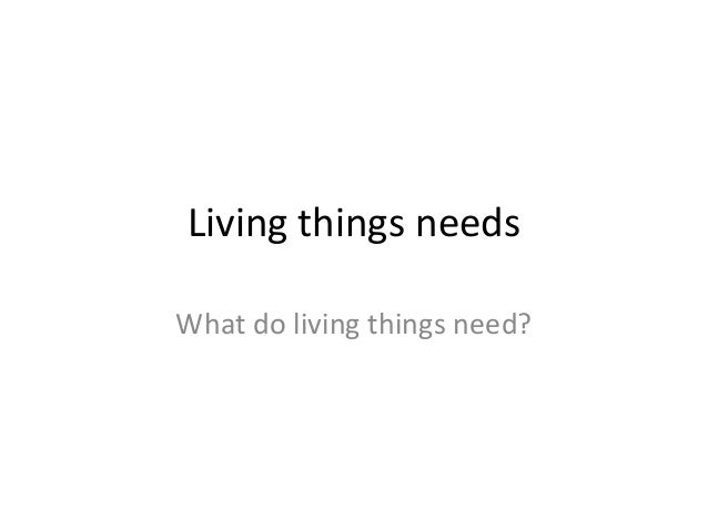 Living things needs What do living things need?