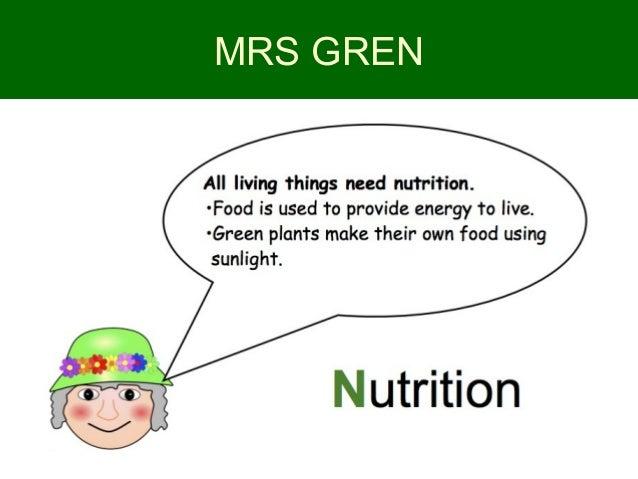 Essay on autotrophic nutrition