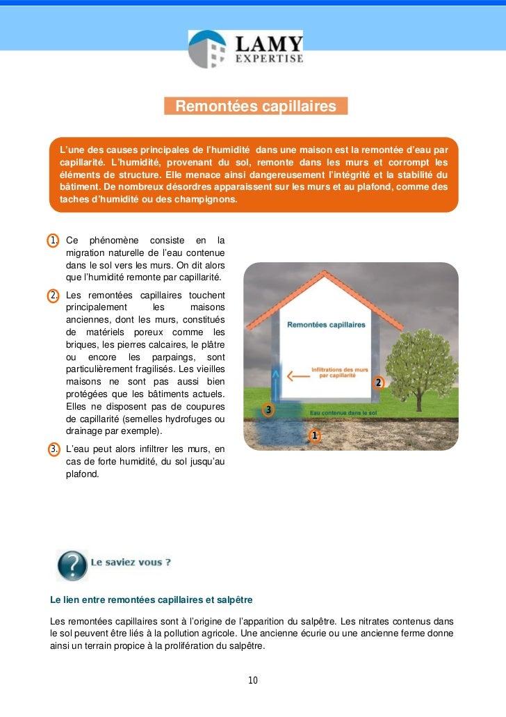 Expertise humidit maison livre blanc par lamy expertise expert h - Cause humidite maison ...