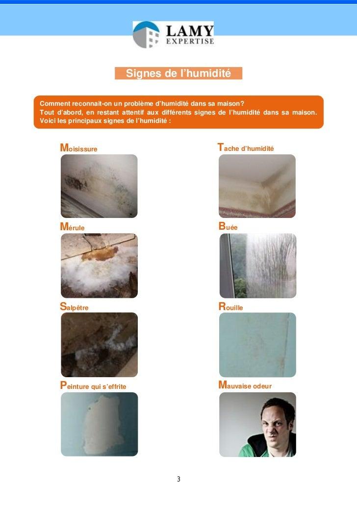 expertise humidit maison livre blanc par lamy expertise expert h. Black Bedroom Furniture Sets. Home Design Ideas