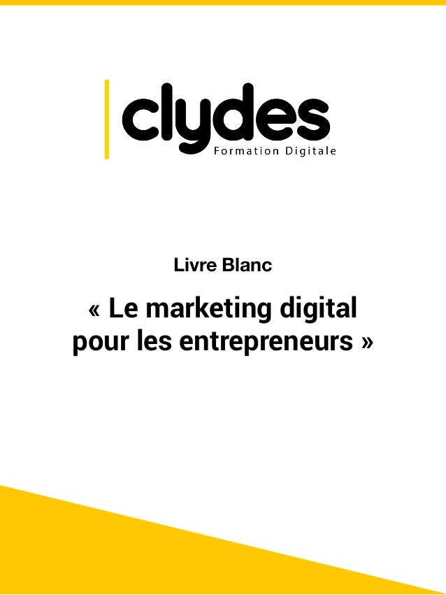 Livre Blanc Le Marketing Digital Pour Les Entrepreneurs