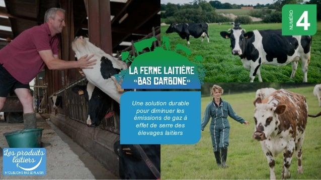 Une solution durable pour diminuer les émissions de gaz à effet de serre des élevages laitiers 4 NUMÉRO
