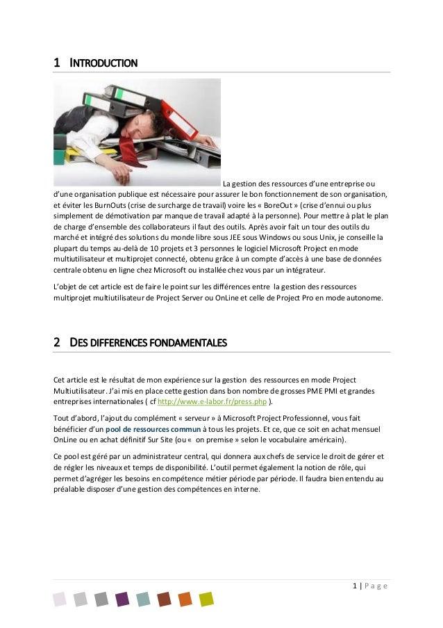Livre blanc gestion des ressources Project Slide 2
