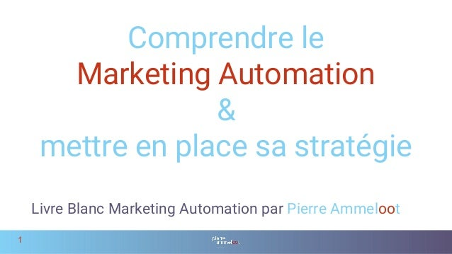 Livre Blanc Marketing Automation 2017 V1 1 1