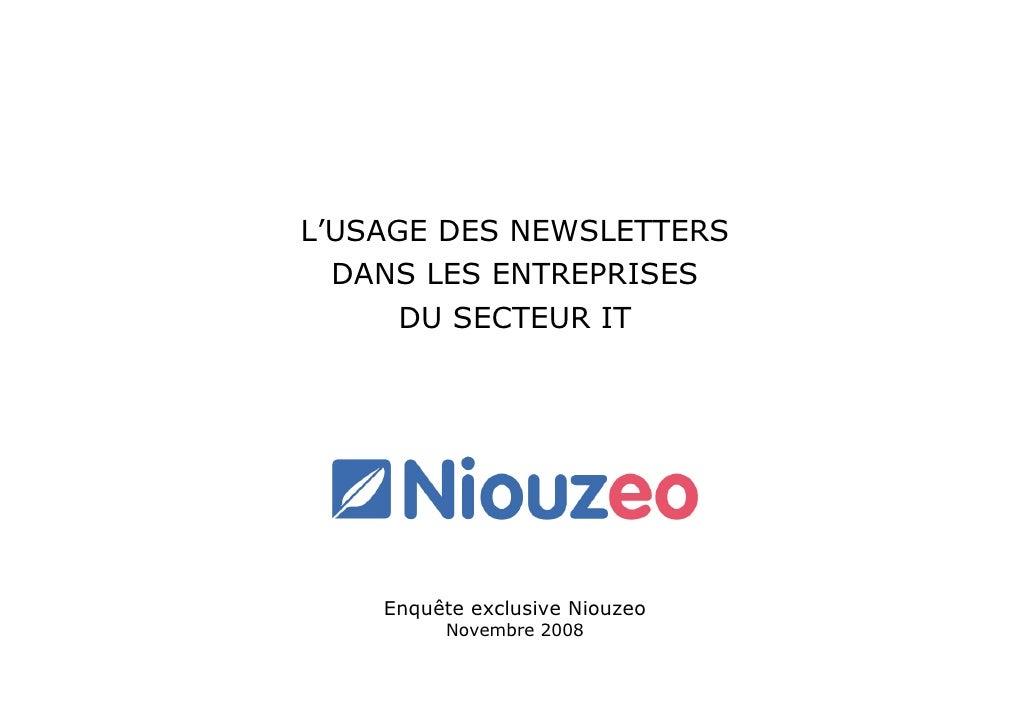 L'USAGE DES NEWSLETTERS   DANS LES ENTREPRISES       DU SECTEUR IT         Enquête exclusive Niouzeo          Novembre 2008