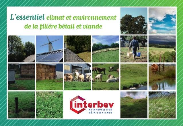 L'essentiel climat et environnement de la filière bétail et viande