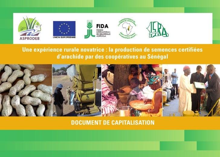Une expérience rurale novatrice : la production de semences certifiées            d'arachide par des coopératives au Sénég...