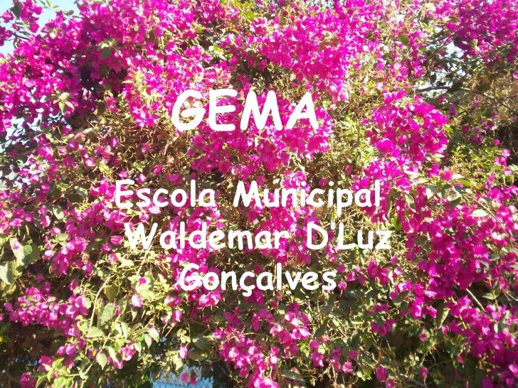 GEMA Escola Municipal Waldemar D'Luz Gonçalves
