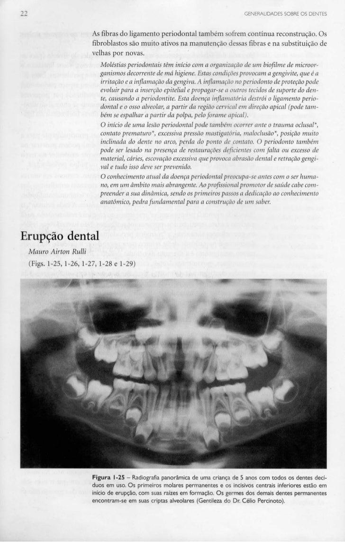 GENERALIDADES SOBRE OS DENTES                      As fibras do ligamento periodontal também sofrem contínua reconstrução....
