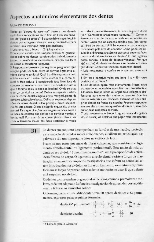 """Aspectos anatómicos elementares dos dentesG_IA DE ESTUDO l~::os os """"blocos de assuntos"""" deste e dos demais           em re..."""