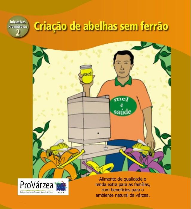 Iniciativas Promissoras  2  Criação de abelhas sem ferrão  1  Alimento de qualidade e renda extra para as famílias, com be...