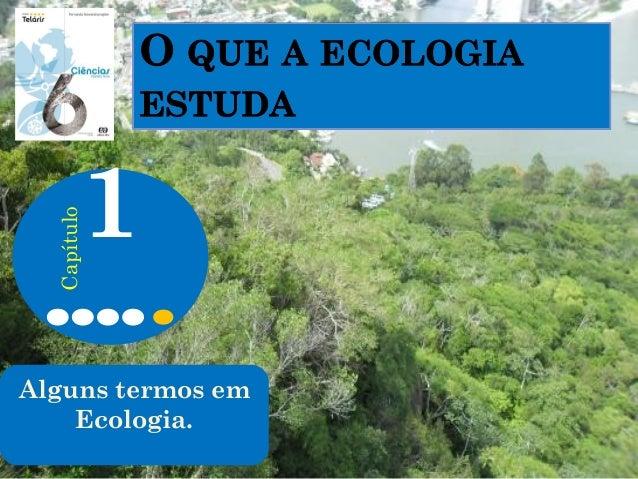 Alguns termos em Ecologia. 1 Capítulo