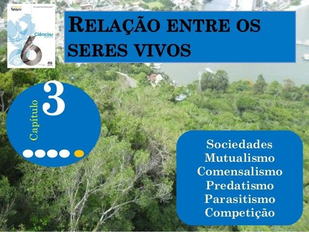 Sociedades Mutualismo Comensalismo Predatismo Parasitismo Competição 3 Capítulo