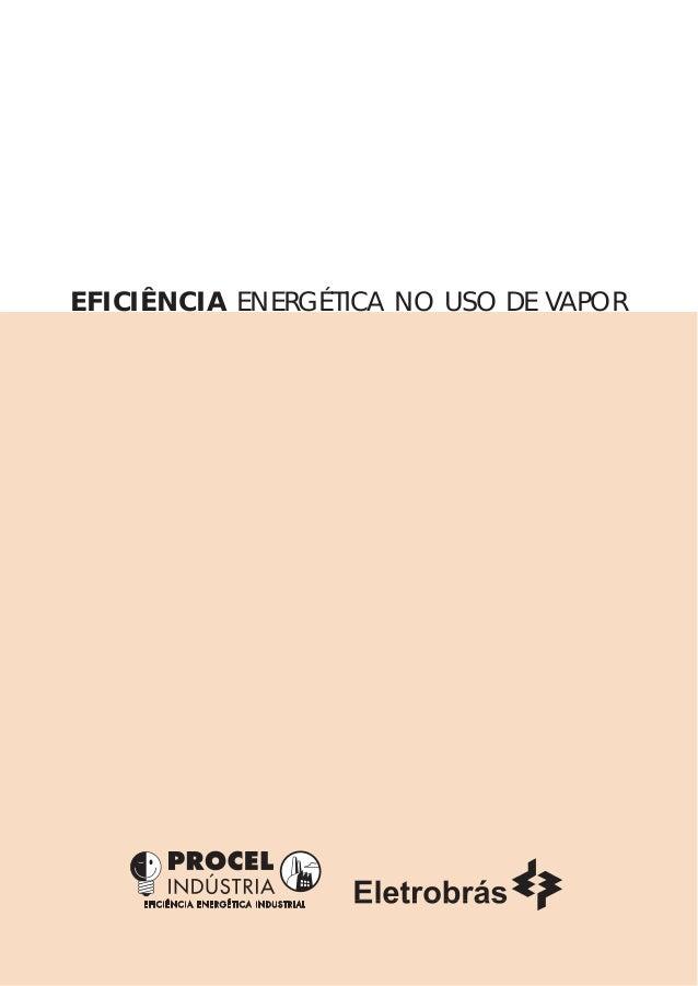 EFICIÊNCIA ENERGÉTICA NO USO DE VAPOR