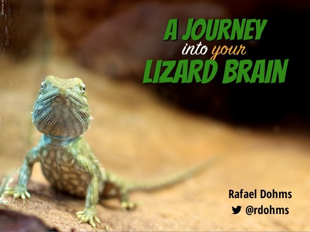 A journey Rafael Dohms 