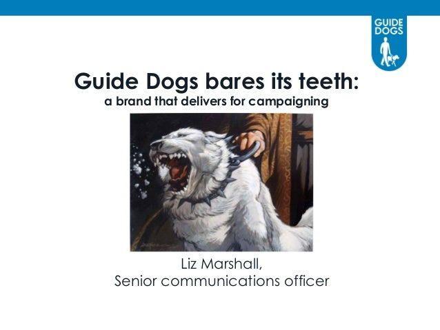 Guide Dogs bares its teeth: a brand that delivers for campaigning  Liz Marshall, Senior communications officer