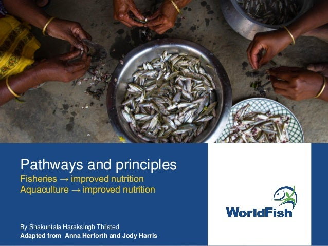 Pathways and principles Fisheries → improved nutrition Aquaculture → improved nutrition By Shakuntala Haraksingh Thilsted ...