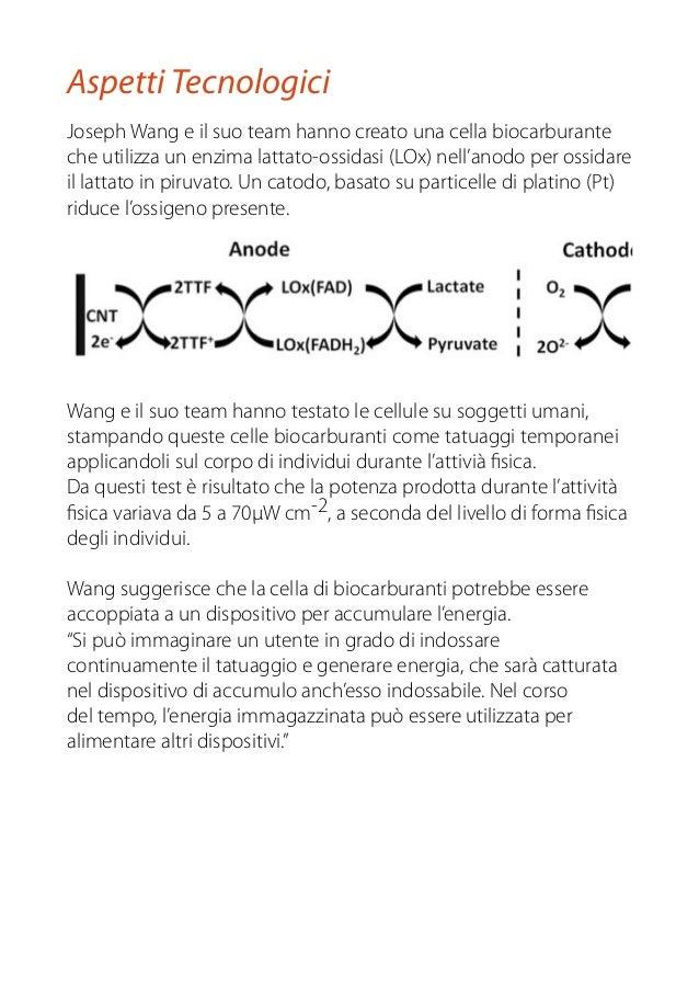 Joseph Wang e il suo team hanno creato una cella biocarburante che utilizza un enzima lattato-ossidasi (LOx) nell'anodo pe...