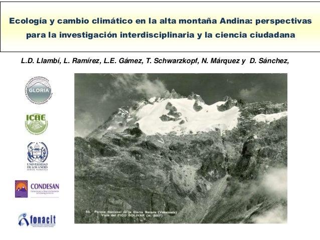 Ecología y cambio climático en la alta montaña Andina: perspectivas para la investigación interdisciplinaria y la ciencia ...