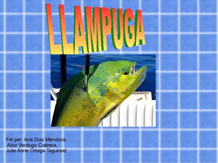 l Fet per: Ana Diaz Mendoza,  Aitor Verdugo Cabrera, Julie Anne Ortega Taguinod LLAMPUGA