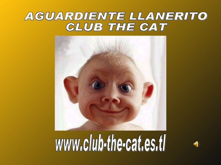 www.club-the-cat.es.tl AGUARDIENTE LLANERITO CLUB THE CAT