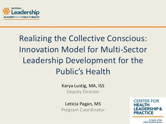 Realizing the Collective Conscious: Innovation Model for Multi-Sector Leadership Development for the Public's Health Karya...