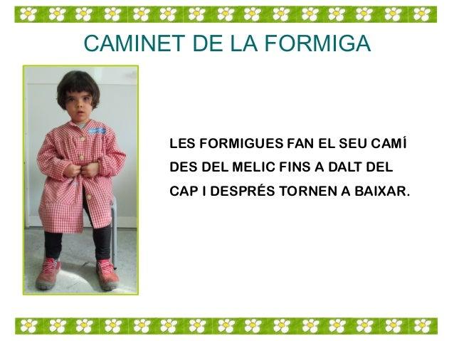 CAMINET DE LA FORMIGA LES FORMIGUES FAN EL SEU CAMÍ DES DEL MELIC FINS A DALT DEL CAP I DESPRÉS TORNEN A BAIXAR.