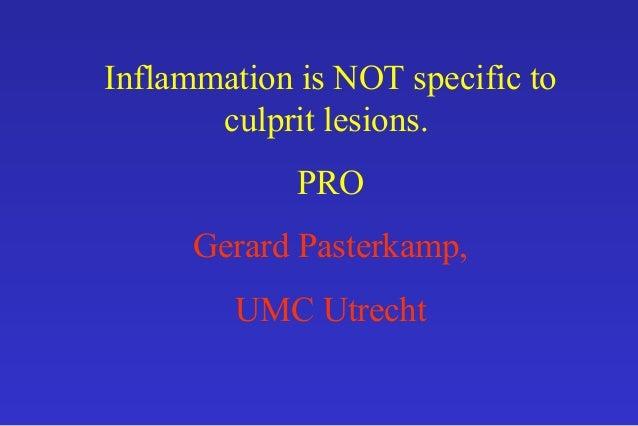 Inflammation is NOT specific to culprit lesions. PRO Gerard Pasterkamp, UMC Utrecht