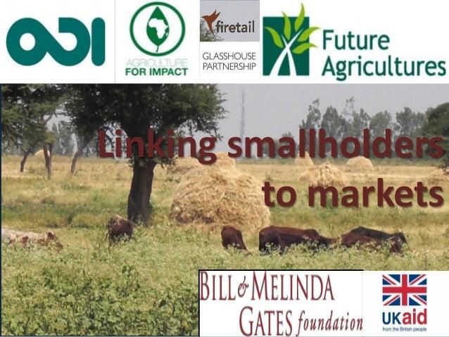Linking smallholders to markets