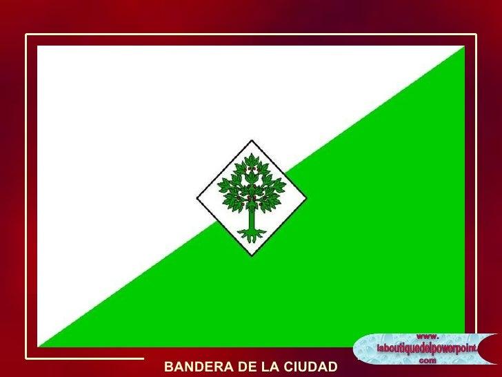 BANDERA DE LA CIUDAD