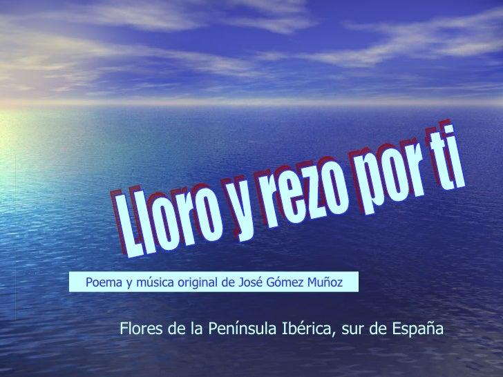 Lloro y rezo por ti Poema y música original de José Gómez Muñoz Flores de la Península Ibérica, sur de España