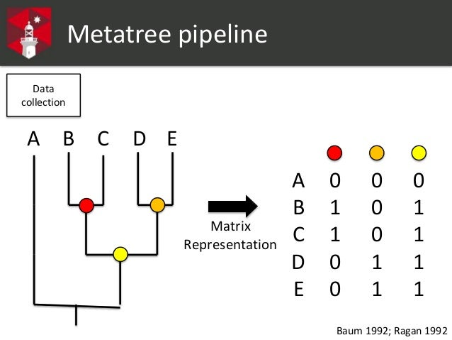 A novel metatree approach to generating large phylogenetic