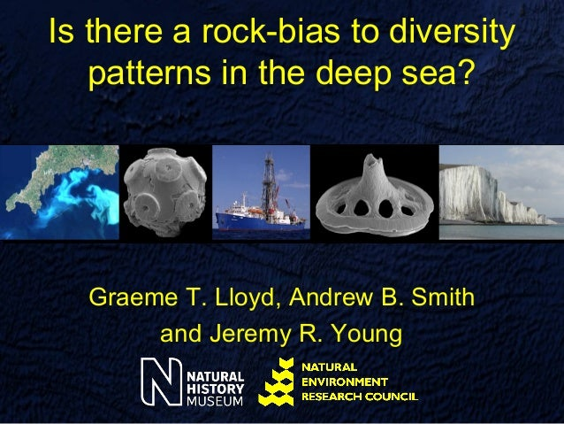 Is there a rock-bias to diversity   patterns in the deep sea?  Graeme T. Lloyd, Andrew B. Smith       and Jeremy R. Young