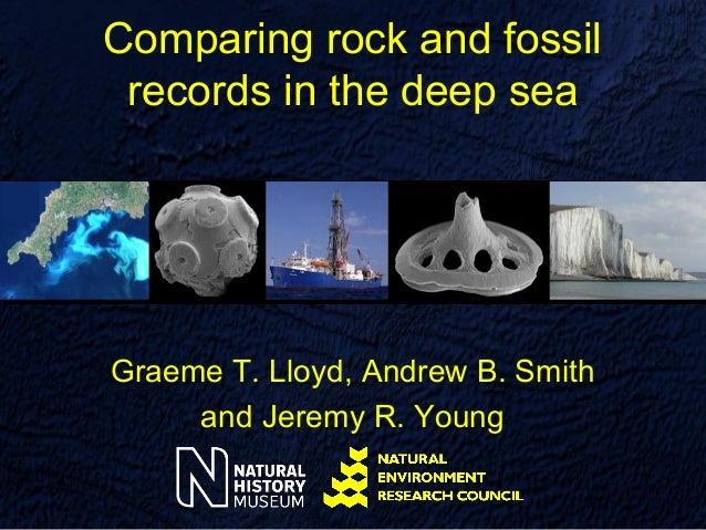 Comparing rock and fossil records in the deep seaGraeme T. Lloyd, Andrew B. Smith     and Jeremy R. Young