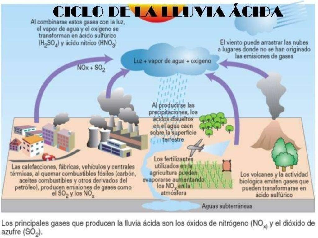 lluvia acida: LLuvia Acida