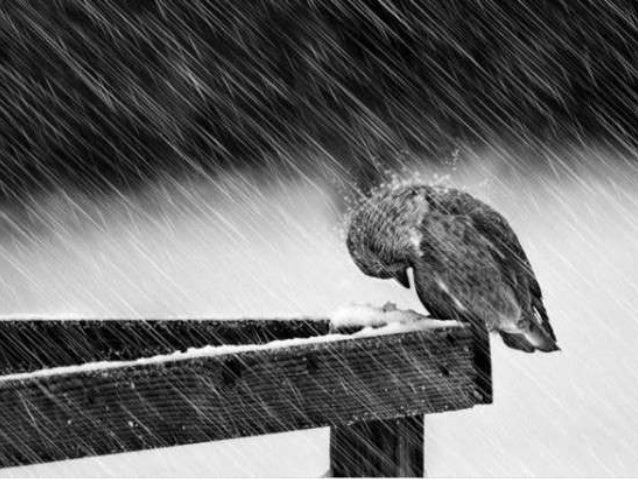Después de la tormenta, siempre llega la calma