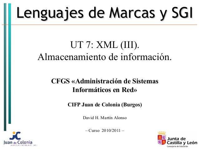Lenguajes de Marcas y SGILenguajes de Marcas y SGI UT 7: XML (III). Almacenamiento de información. CFGS «Administración de...