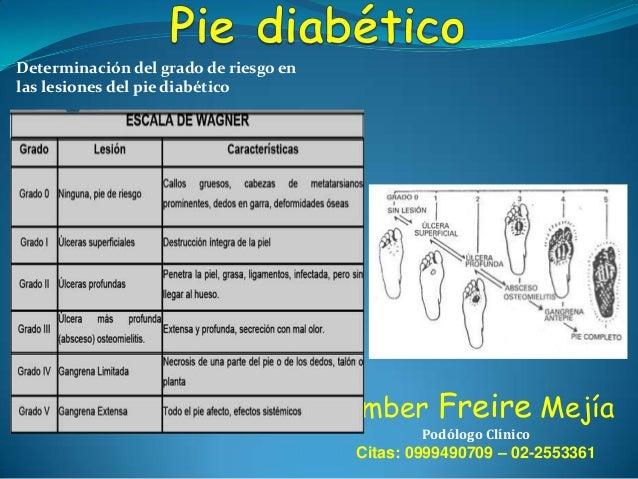Determinación del grado de riesgo en las lesiones del pie diabético  Límber Freire Mejía Podólogo Clínico  Citas: 09994907...