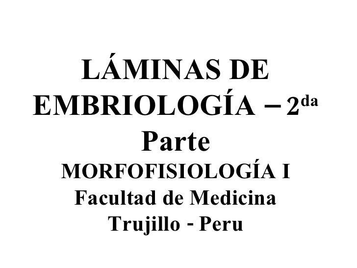 LÁMINAS DE EMBRIOLOGÍA – 2 da  Parte MORFOFISIOLOGÍA I Facultad de Medicina Trujillo - Peru