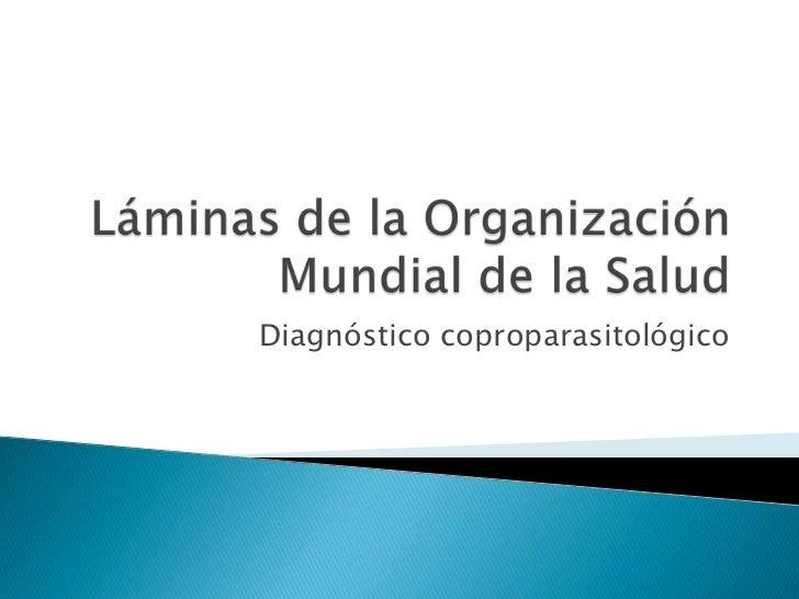 Láminas de la Organización Mundial de la Salud<br />Diagnóstico coproparasitológico<br />