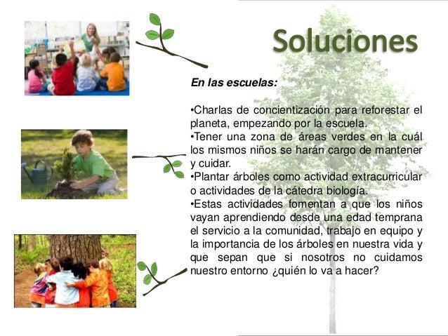 La deforestaci n for Importancia de un vivero