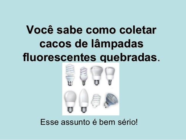 Você sabe como coletar   cacos de lâmpadasfluorescentes quebradas.   Esse assunto é bem sério!